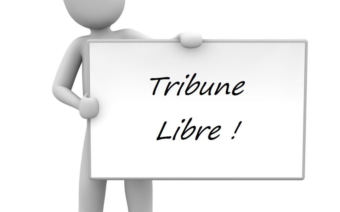 """Tribune Libre à Lacroix Sofrel sur le """"Smart Environment"""""""