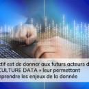 culture data